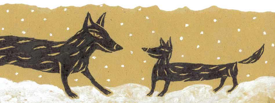 Lamarque, Il lupo, l'albero e la bambina, libro illustrato per bambini, Le rane Interlinea