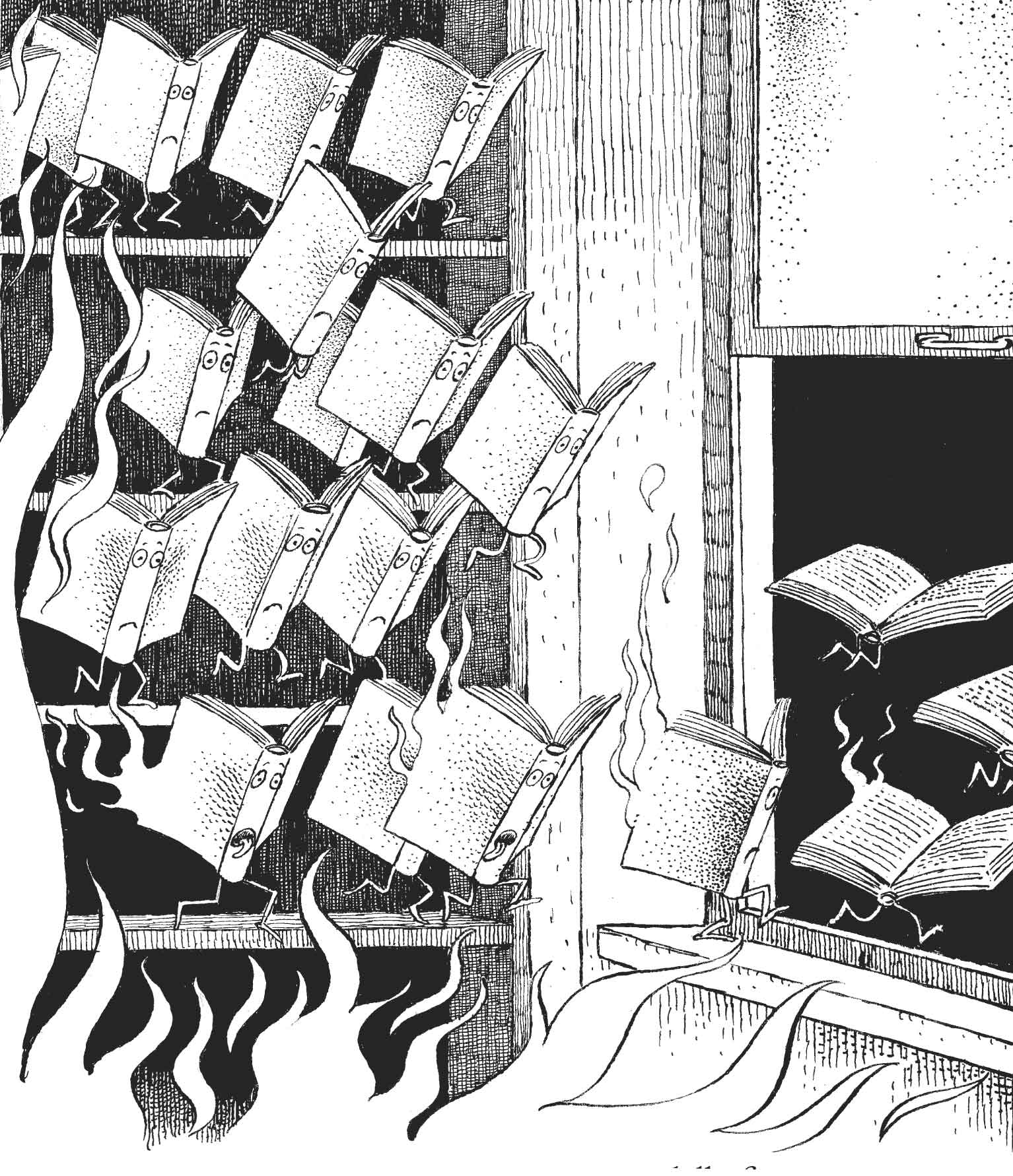 Lavatelli, Chi ha incendiato la biblioteca, libro illustrato per ragazzi, Interlinea edizioni