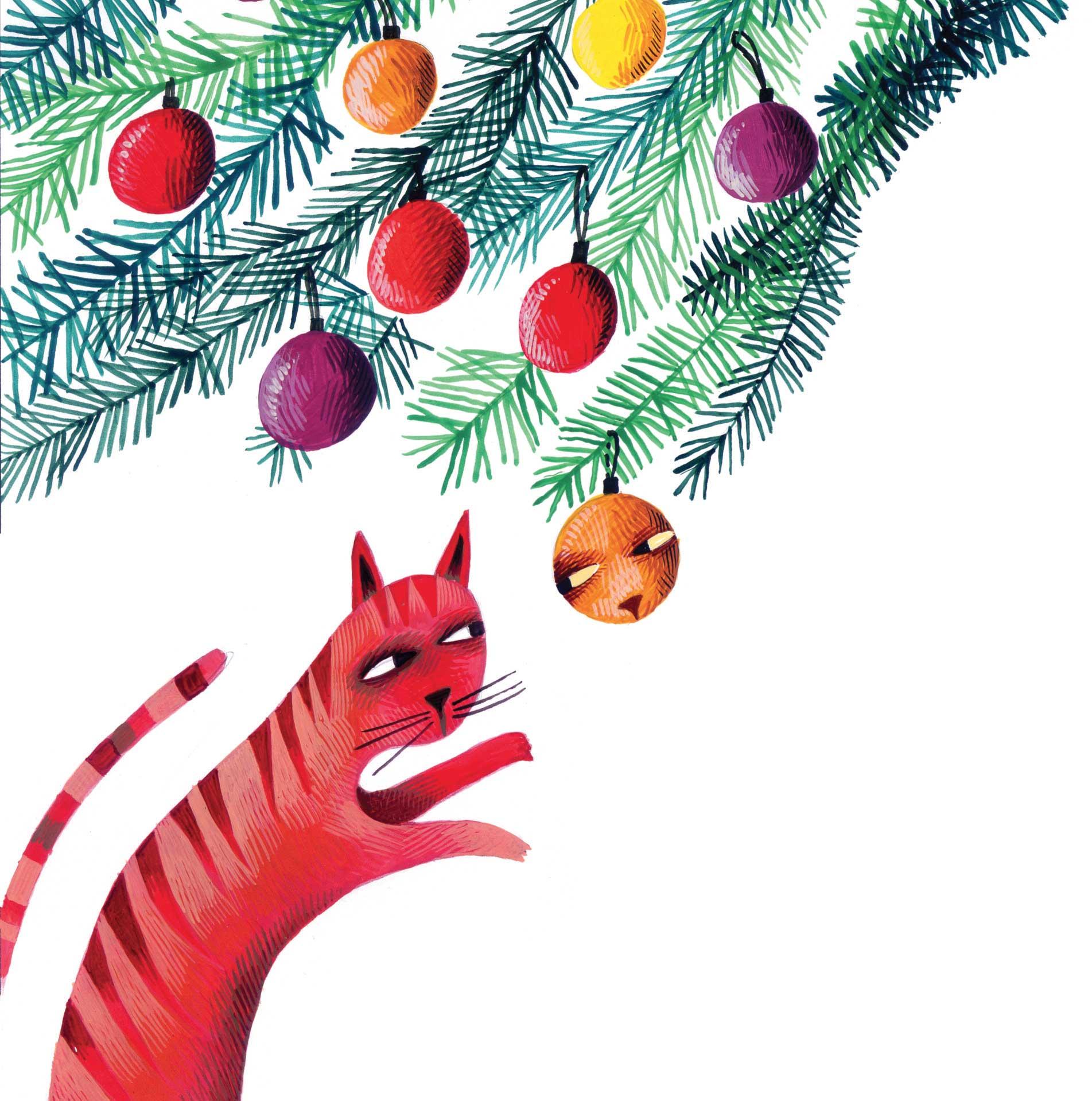 Tognolini, Salvataggio a mezzanotte, libro illustrato per bambini, Le rane Interlinea